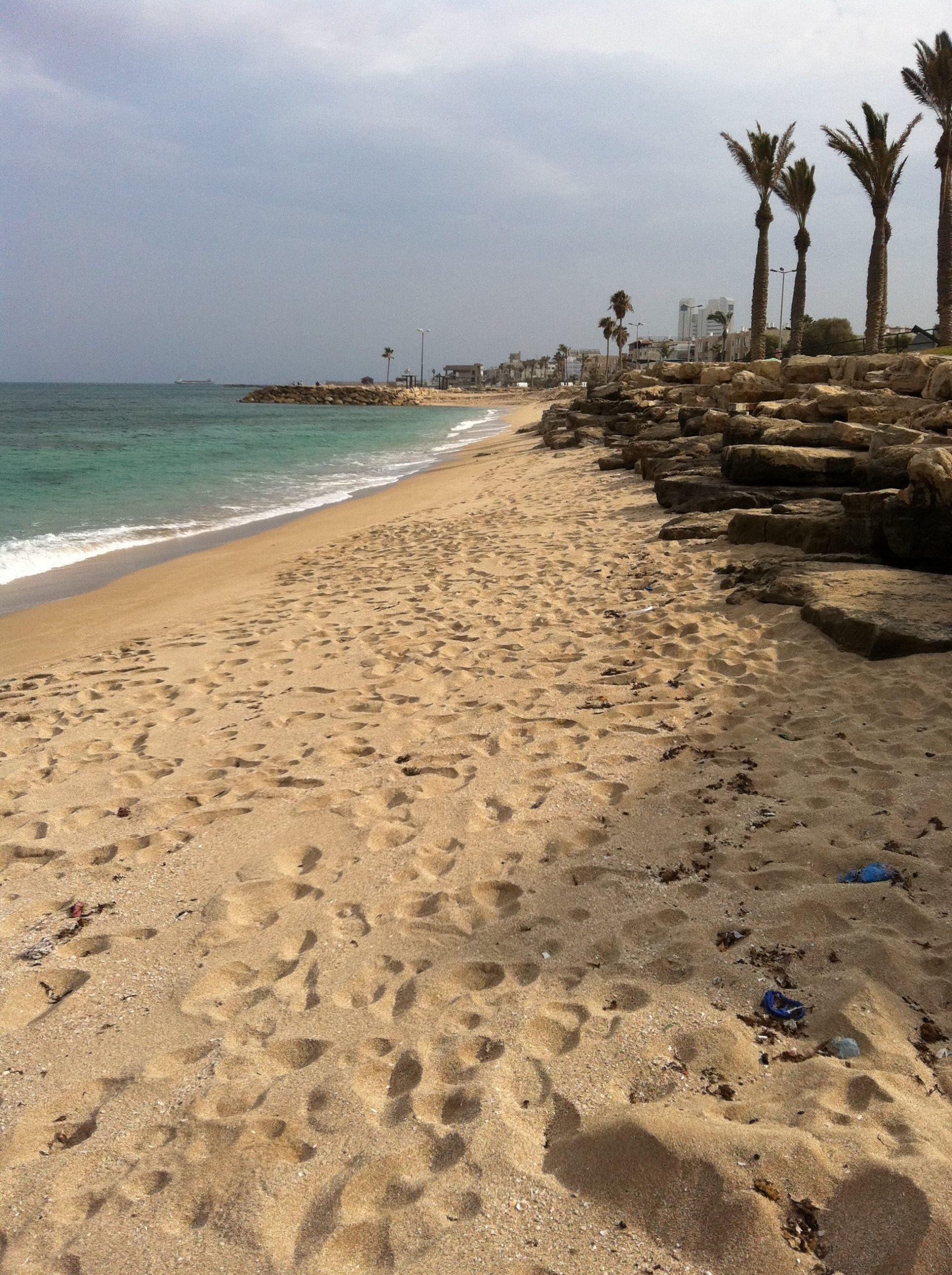 חוף הגולשים חיפה5